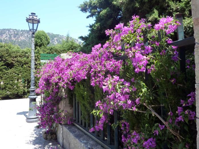 Mallorca Hot Spots_4