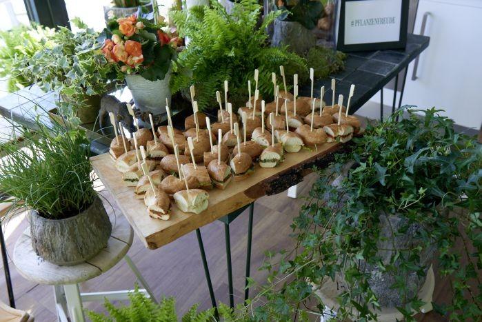 Pflanzenfreude Blogger Brunch 2015_11